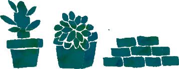 画像-観葉植物